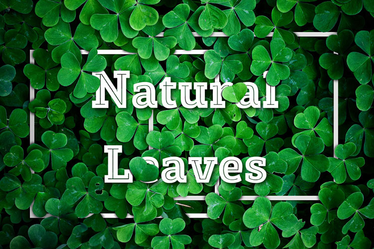 Natural Leaves Text Effect